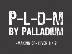 palladium_PLDM_HIV_2011