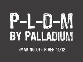 palladium_PLDM_HIV_2011